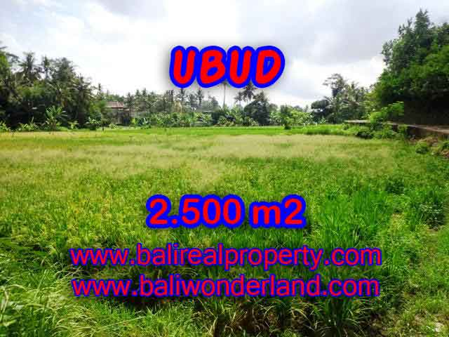 Astonishing Property for sale in Bali, LAND FOR SALE IN UBUD Bali – TJUB418