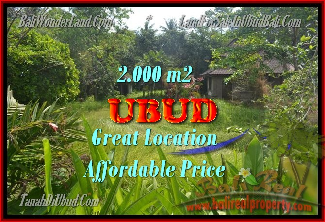 Fantastic Property for sale in Bali, land sale in Ubud Bali – TJUB429