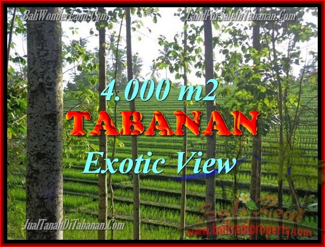 Land in Bali for sale, Outstanding view in Tabanan Penebel Bali – TJTB150