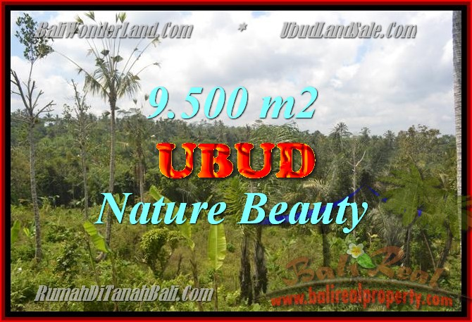 Property in Bali for sale, Fantastic view in Ubud Payangan – TJUB430