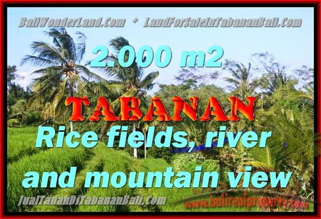Land for sale in Bali, Fantastic view in Tabanan kediri – TJTB147