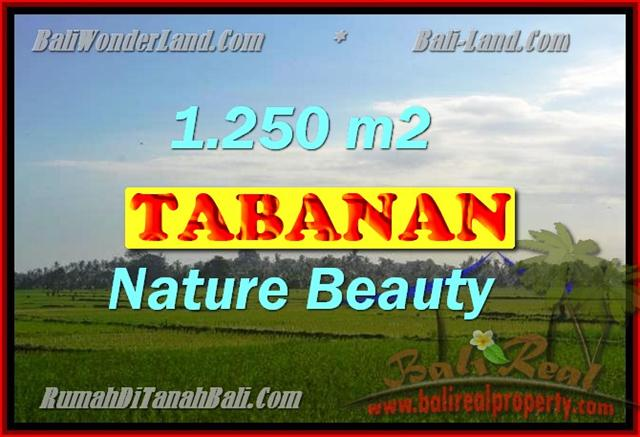 Land for sale in Bali, spectacular view in Tabanan Bali – TJTB148