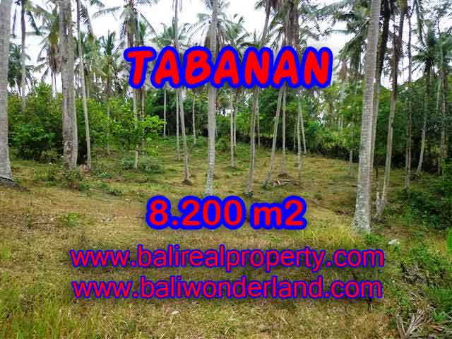 Land for sale in Bali, exceptional view in Tabanan selemadeg – TJTB142