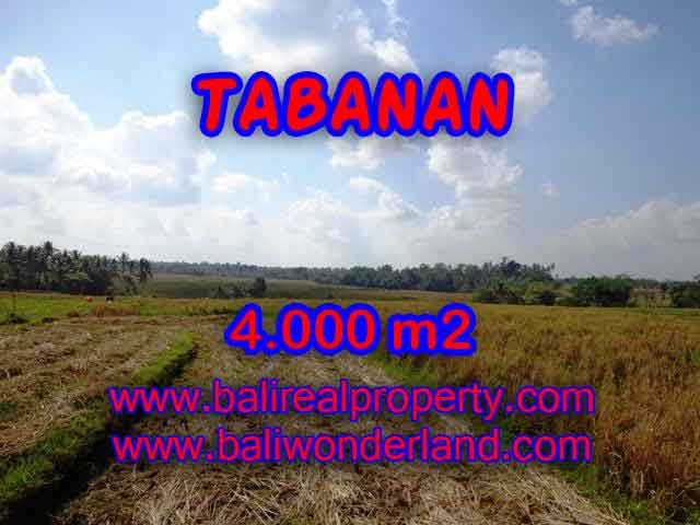 Land for sale in Tabanan Bali, Wonderful view in Tabanan selemadeg – TJTB132