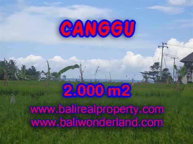 Astonishing Property for sale in Bali, LAND FOR SALE IN CANGGU Bali – TJCG140
