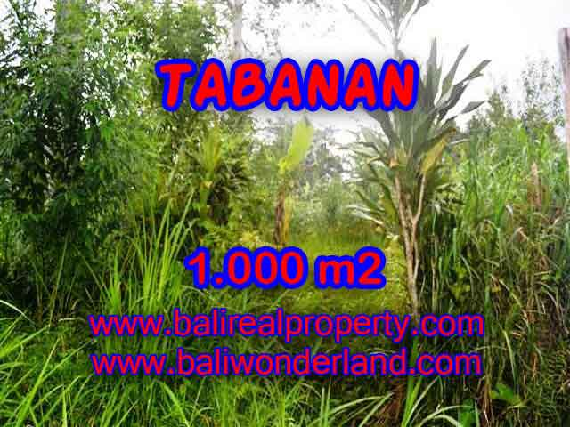Property in Bali for sale, Astonishing land for sale in Tabanan Bali – TJTB104