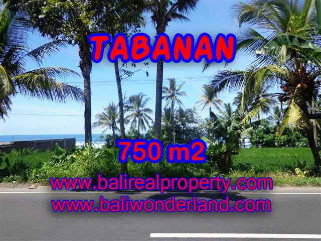 Astounding Property in Bali for sale, Ocean and ricefields view land in Tabanan Bali – TJTB105