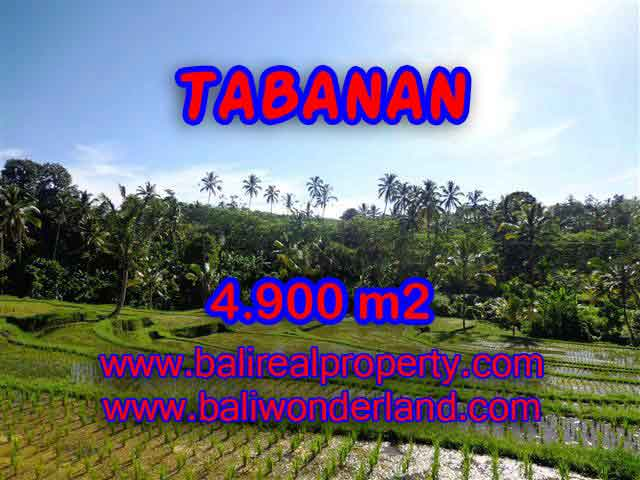 Exotic Property for sale in Bali, LAND FOR SALE IN TABANAN Bali – TJTB111