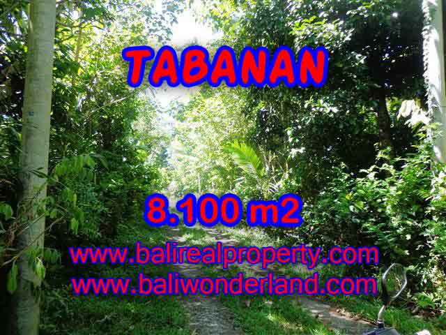 Spectacular Property for sale in Bali, land for sale in Tabanan Bali – TJTB113