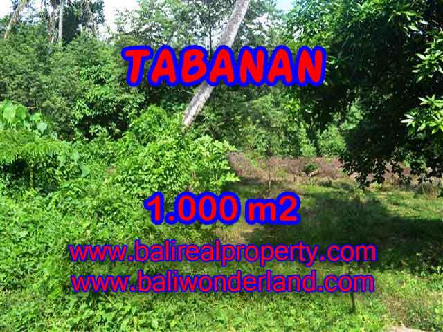Magnificent Property in Bali for sale, land in Tabanan Bali for sale – TJTB114