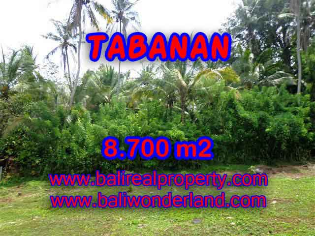 Exceptional Property in Bali, land for sale in Tabanan Bali – TJTB115