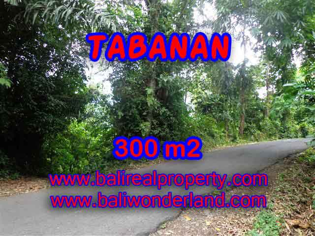 Magnificent Property for sale in Bali, land for sale in Tabanan Bali – TJTB116