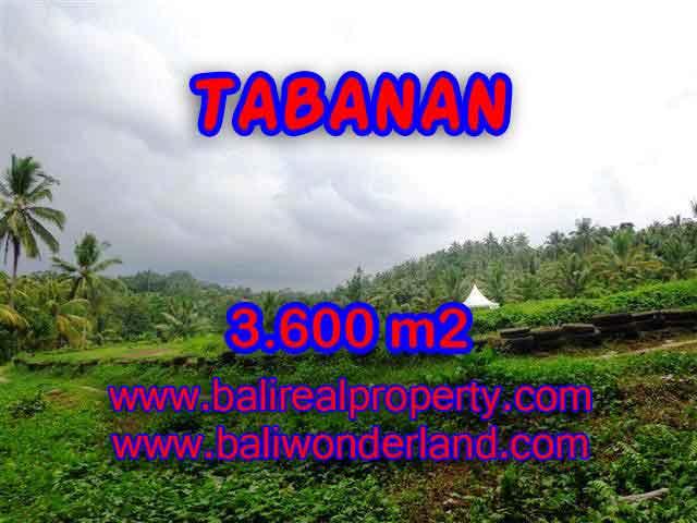 Land for sale in Tabanan Bali, Unbelievable view in Tabanan Selemadeg – TJTB117