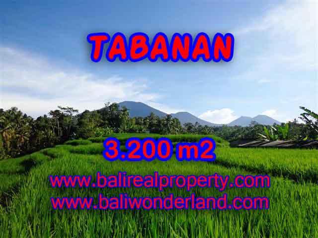 Land for sale in Tabanan Bali, Astounding view in Tabanan Penebel – TJTB118