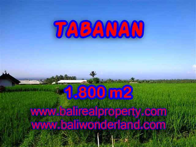 Land in Tabanan Bali for sale, Exotic view in Tabanan Penebel – TJTB119