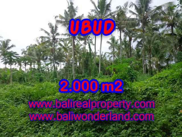 Extraordinary Land for sale in Ubud Bali, garden view by the small river in Ubud Center– TJUB397
