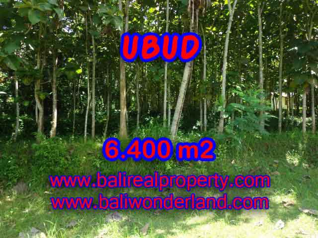 Land in Bali for sale, attractive view in Ubud Payangan Bali – TJUB401