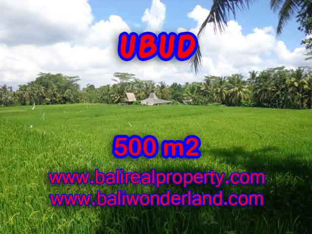 Magnificent Land for sale in Bali, Ricefields view in Ubud Payangan Bali – TJUB402