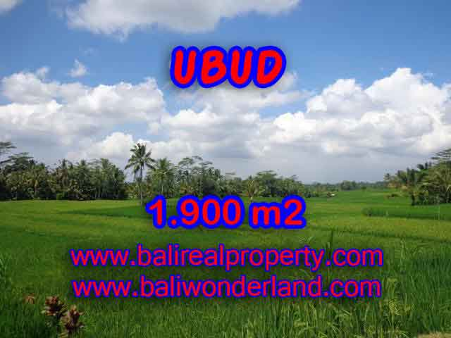 Land for sale in Bali, exceptional view in Ubud Payangan – TJUB403