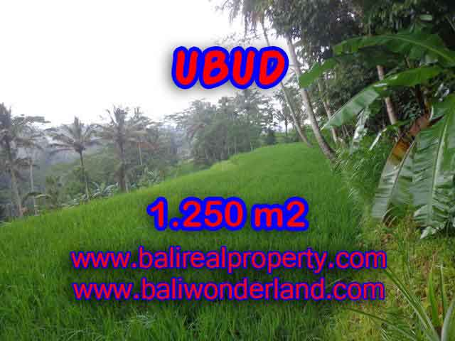 Land in Bali for sale, extraordinary view in Ubud Tampak siring – TJUB405