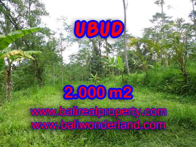 Land in Bali for sale, fantastic view in Ubud Bali – TJUB406