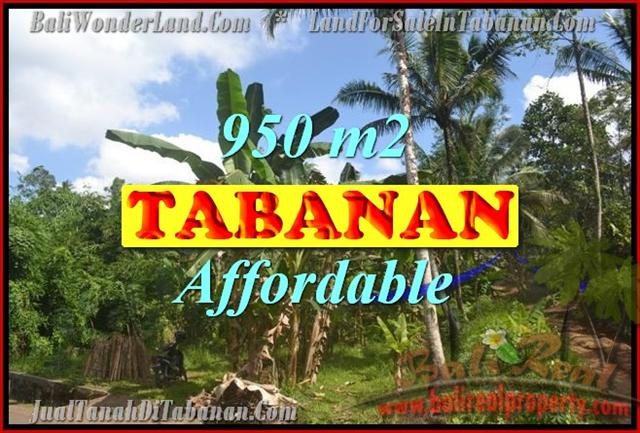 Fantastic Land for sale in Bali, Garden view in Tabanan Kota ( City )– TJTB146