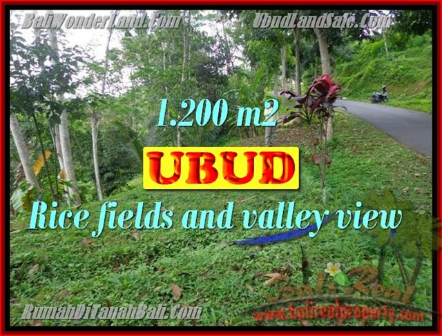 Beautiful Property for sale in Bali, LAND FOR SALE IN UBUD Bali – TJUB422