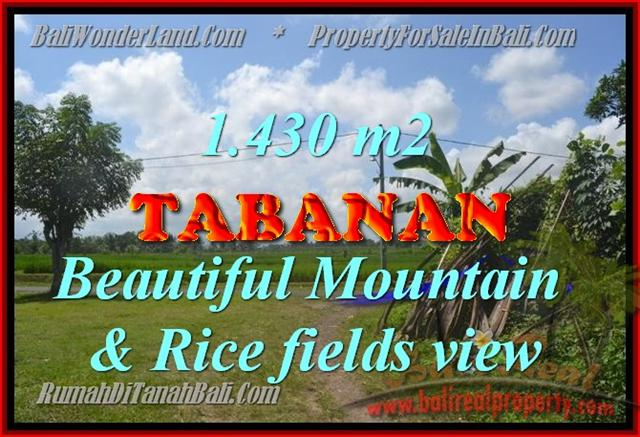Land in Bali for sale, fantastic view in Tabanan Bali – TJTB145