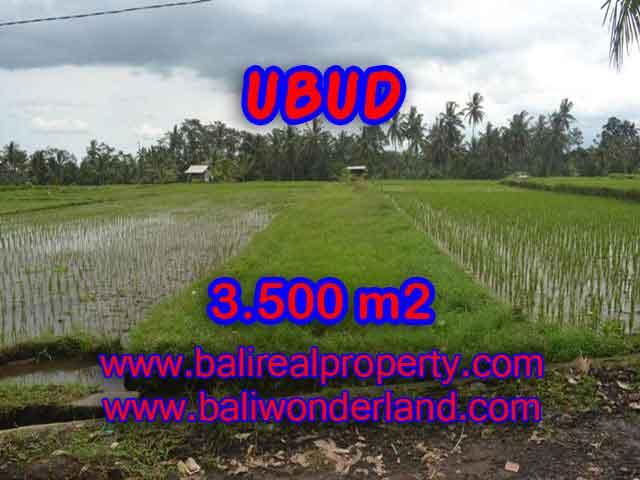 Land in Ubud Bali for sale, Outstanding view in Ubud Pejeng – TJUB395