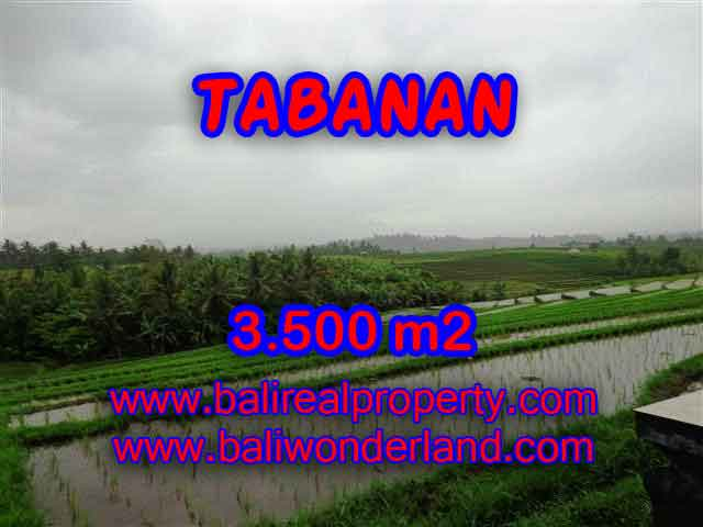Magnificent Land for sale in Bali, Rice fields, mountain & ocean view in Tabanan selemadeg Bali – TJTB141