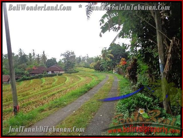 Land in Bali for sale, attractive view in Tabanan selemadeg Bali – TJTB140