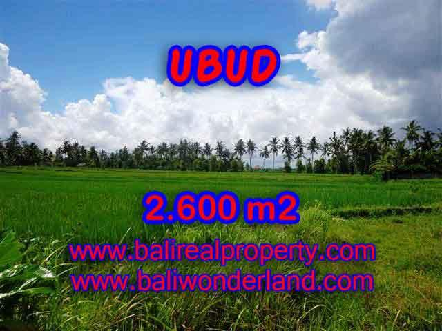 Spectacular Property for sale in Bali, land for sale in Ubud Bali – TJUB374