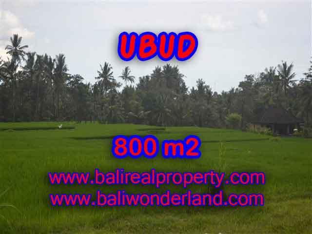 Land in Ubud for sale, Outstanding view in Ubud Pejeng Bali – TJUB396