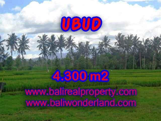 Property in Bali for sale, Fantastic view in Ubud Center – TJUB370