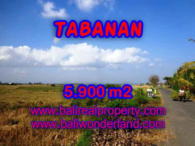 Interesting Land for sale in Tabanan Bali, paddy fields, mountain and ocean view in Tabanan selemadeg– TJTB131