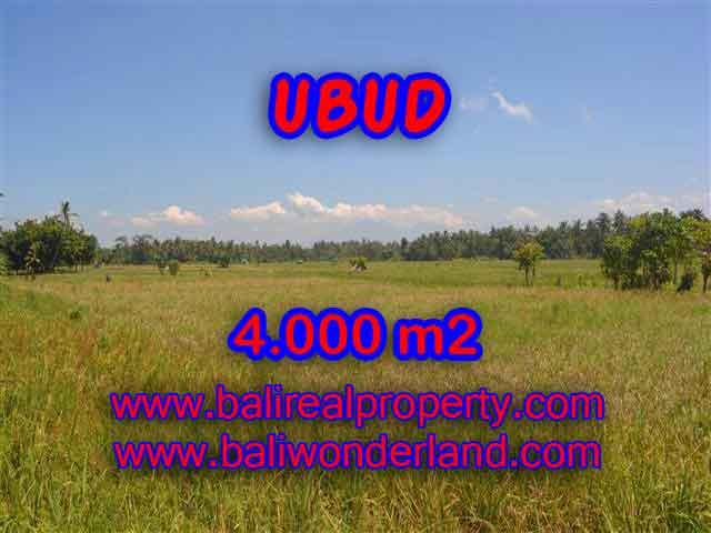 Exotic LAND FOR SALE IN UBUD Bali, Mountain and rice paddy view in Ubud Center– TJUB387