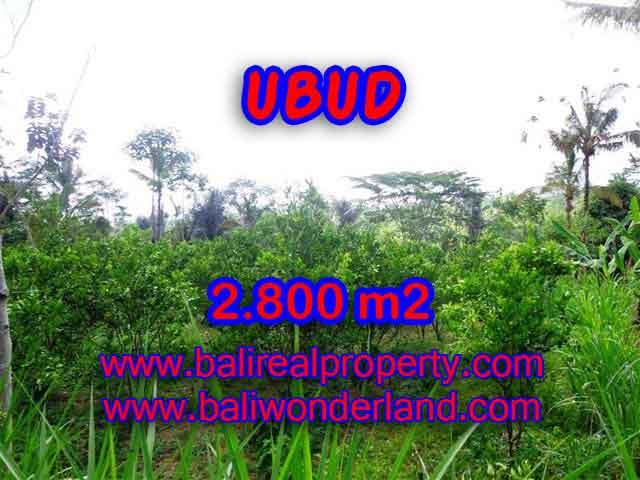 Magnificent Property in Bali for sale, land in Ubud Bali for sale – TJUB375