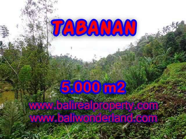 Land in Bali for sale, astounding view in Tabanan Bali – TJTB139