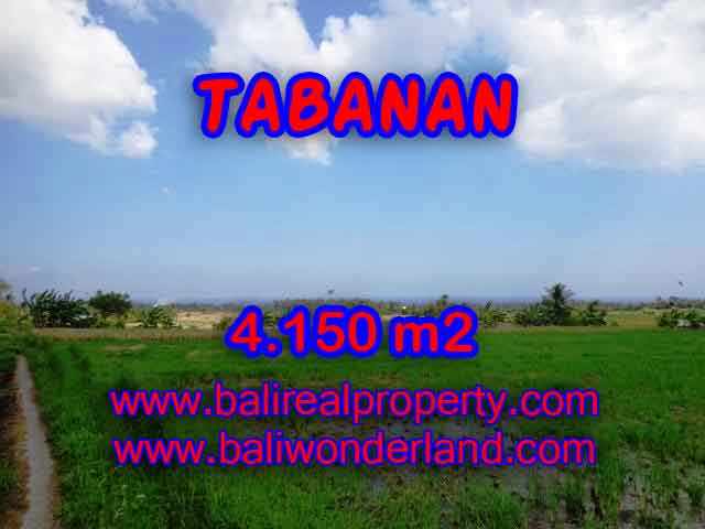 Land for sale in Bali, amazing view in Tabanan selemadeg – TJTB137