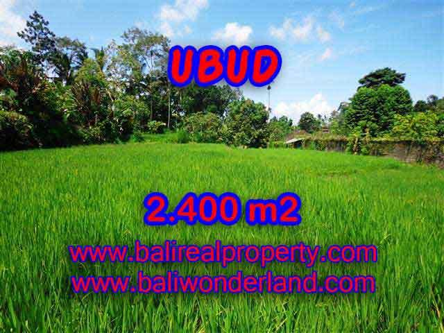 Land in Ubud Bali for sale, Outstanding view in Ubud Tegalalang – TJUB390
