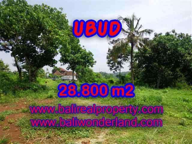 Astounding Property in Bali for sale, mountain and paddy view on river valley land in Ubud Bali – TJUB366
