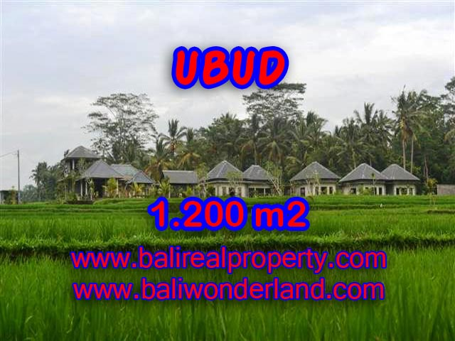 Property in Bali for sale, Astonishing land for sale in Ubud Bali – TJUB365