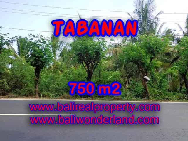 Land for sale in Bali, astonishing view in Tabanan selemadeg Bali – TJTB138