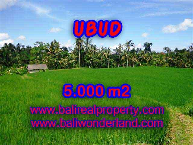 Land for sale in Ubud, Stunning view in Ubud Tegalalang Bali – TJUB389