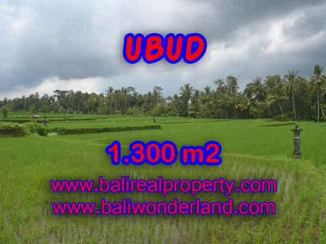Land for sale in Ubud, Magnificent view in Ubud Pejeng Bali – TJUB394