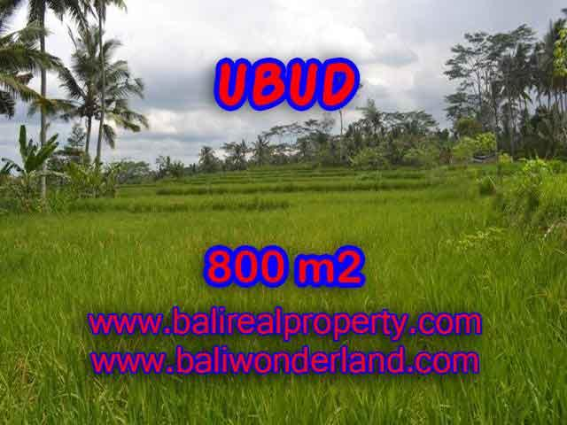 Land for sale in Ubud Bali, Wonderful view in Ubud Pejeng – TJUB393