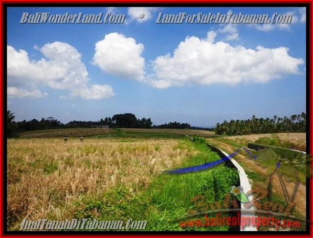 Extraordinary Land for sale in Tabanan Bali, paddy fields, mountain and ocean view in Tabanan selemadeg– TJTB136