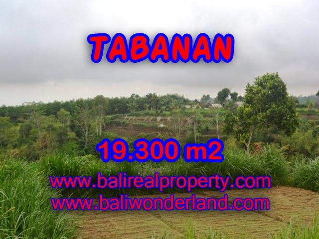 Fantastic Land for sale in Bali, forest and Denpasar in Bedugul Tabanan– TJTB086