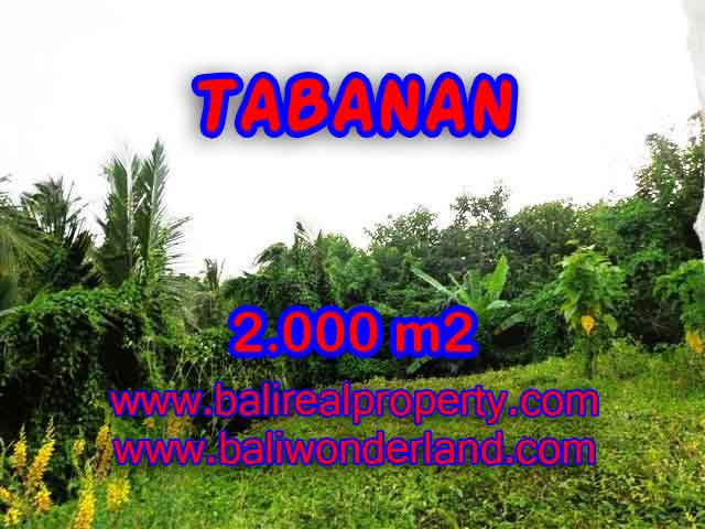 Wonderful Property in Bali for sale, land in Tabanan Bali for sale – TJTB099