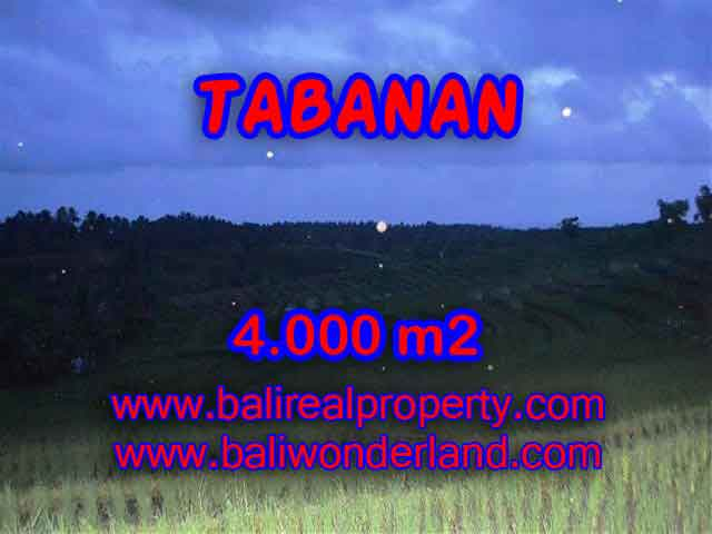Beautiful Land for sale in Bali, mountain, river, rice field, and beach view in Tabanan Bali – TJTB096